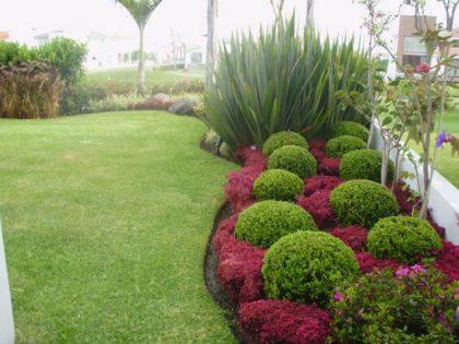 Curso jardineria residencial