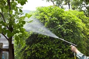 Curso aplicador de plaguicidas de uso fitosanitario